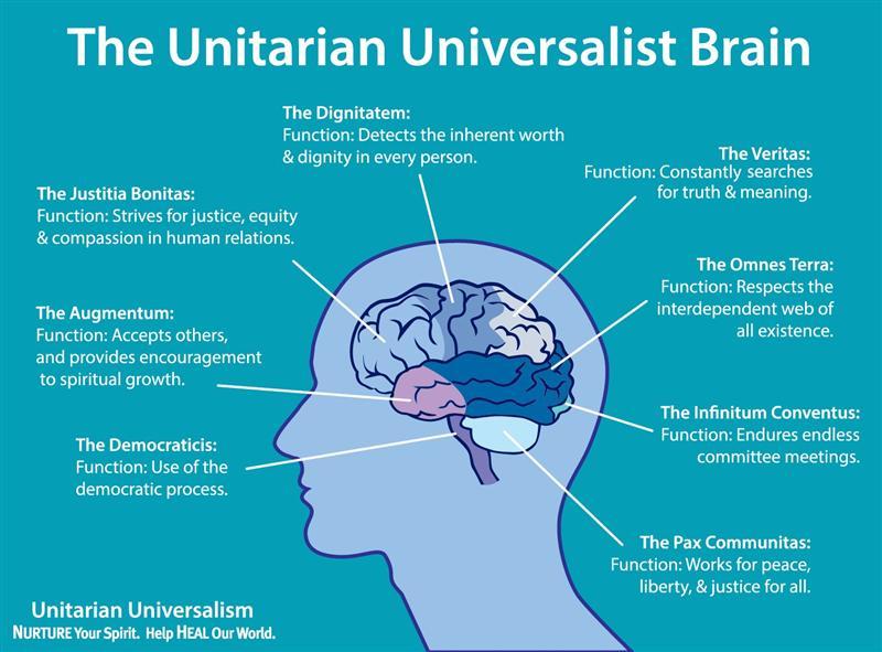 UU_brain